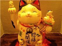 招き猫菊川.jpg
